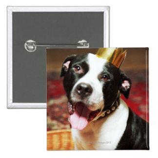 El nombre latino para todos los perros nacionales  pin cuadrada 5 cm