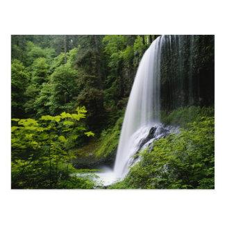 El norte medio baja, parque de estado de las caída tarjetas postales