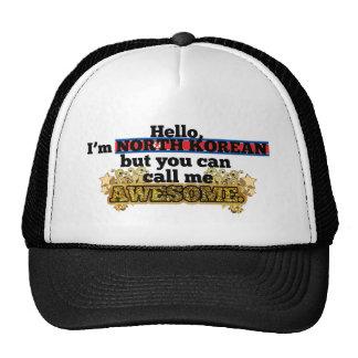 El North Korean, pero me llama impresionante Gorro