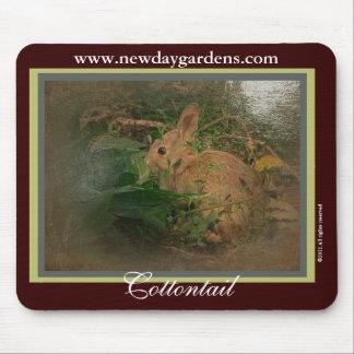 El nuevo día cultiva un huerto conejito del conejo tapetes de raton