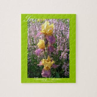 El nuevo día cultiva un huerto iris 'Volcano que Rompecabezas