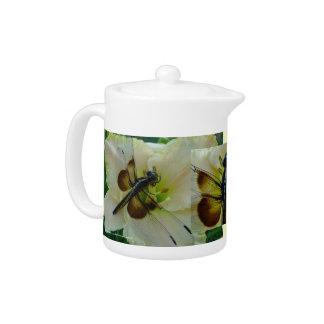 El nuevo día cultiva un huerto libélula y Daylily