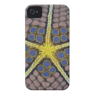 El Océano Índico, Indonesia, isla de Sulawesi, iPhone 4 Case-Mate Cárcasas