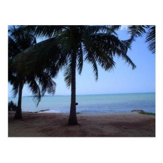 El océano por mañana postal