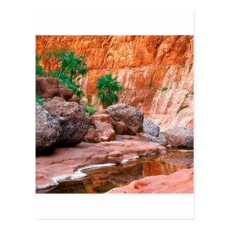 EL ocultado barranco Cajon Baja México del oasis Tarjetas Postales