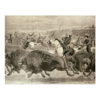 """El """"oeste salvaje"""" en el gran americano tarjeta postal"""