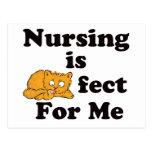 El oficio de enfermera es Purrr-fect para mí Postal