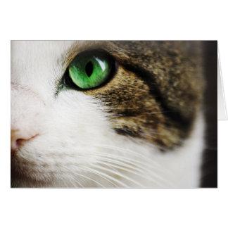 El ojo de gato tarjeta de felicitación
