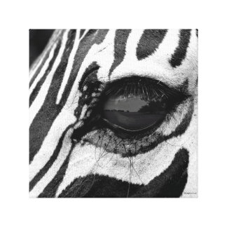 El ojo de la cebra impresión en tela