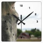 El ojo de un animal del caballo reloj de pared