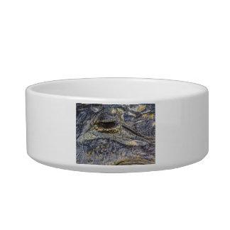 El ojo de un cocodrilo tazones para comida para gato