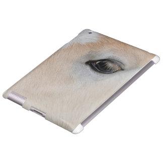 El ojo de un potro raro de la raza de Haflinger