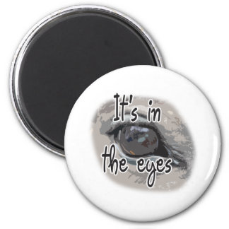 El ojo del caballo - está en los ojos iman de frigorífico