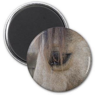 El ojo del caballo imán para frigorifico