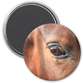 El ojo del caballo imanes de nevera