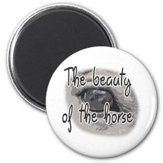 El ojo del caballo - la belleza del caballo imán para frigorifico