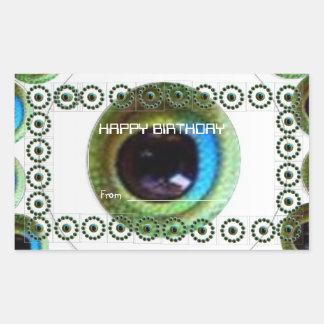 El ojo del dragón chino de HAPPYBIRTHDAY Goodluck Pegatina Rectangular