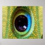 El ojo del dragón - colección del chino de Goodluc Poster
