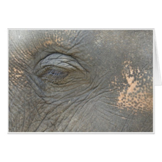 El ojo del elefante tarjeta de felicitación