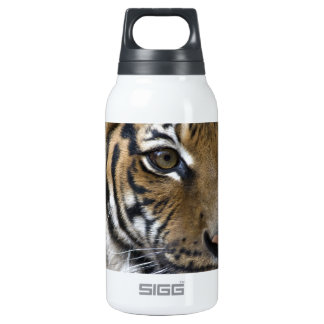El ojo del tigre