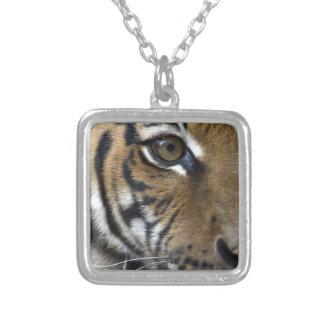 El ojo del tigre colgante cuadrado