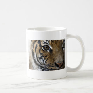 El ojo del tigre taza clásica