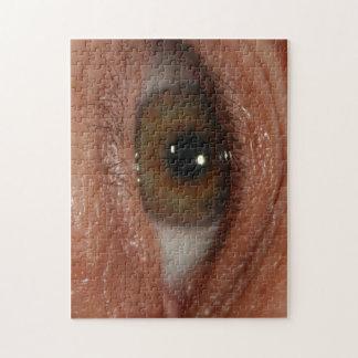 """El """"ojo le ve"""" desconcertar - el humor, impar puzzles con fotos"""