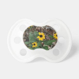 el ojo morado susan florece la flor bonita del ama chupete