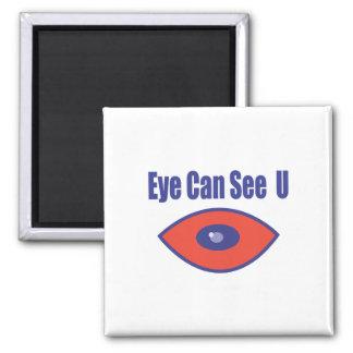 El ojo puede ver el U. Imán Cuadrado