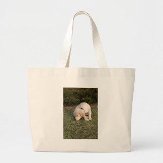 El oler del perrito del golden retriever bolsas