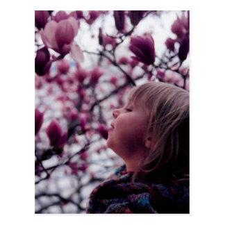 El olor de la primavera tarjeta postal