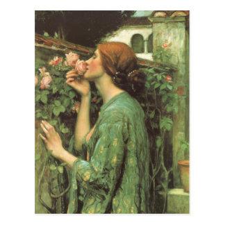 El olor de rosas tarjeta postal