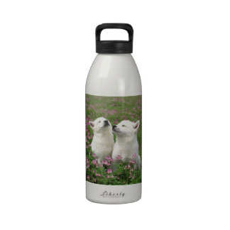 ¡El olor tiene gusto de la primavera! Botellas De Agua Reutilizables