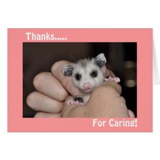 El oposum le agradece cardar tarjeta pequeña