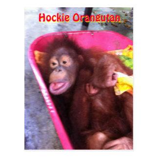 El orangután de Hockie un special necesita al Postal