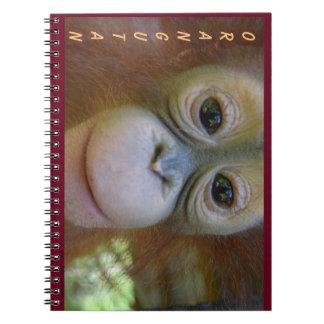 El orangután del bebé sonríe para la cámara note book