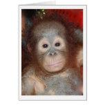 El orangután más lindo del bebé, gran mono de tarjeta pequeña