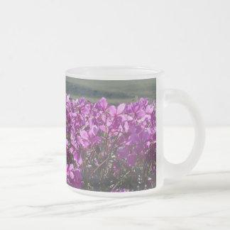 El orcide groenlandés taza de cristal