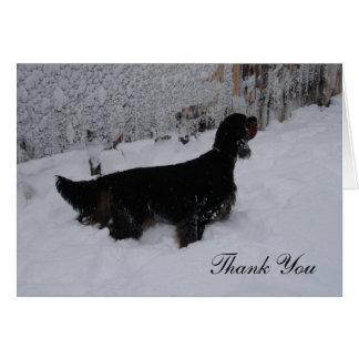 El organismo de Gordon en una nevada le agradece o Tarjeton