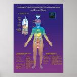 El órgano de Chakra/la glándula y el flujo de ener Posters