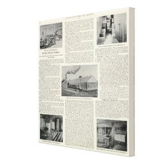 El orgullo de Petaluma, California Impresión De Lienzo