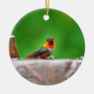 El ornamento del colibrí de Allen Adorno Redondo De Cerámica