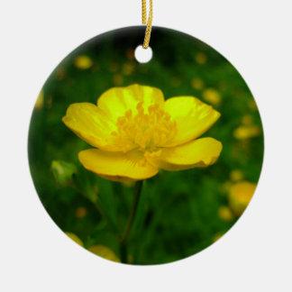 El ornamento del ranúnculo florece la decoración d adorno