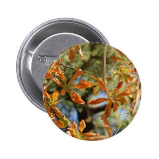 El oro otoñal sale del ejemplo de flores pins