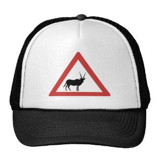 El Oryx de la precaución, trafica la señal de Gorro De Camionero