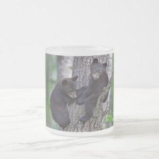 El oso hermana arte lindo de los animales de las taza de café esmerilada