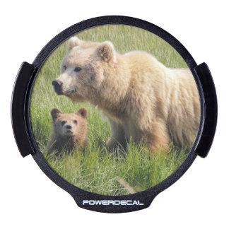 El oso lleva el aniversario animal del sticker LED para ventana
