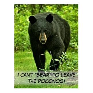 """¡El oso negro del patio trasero """"no puede llevar Tarjeta Postal"""