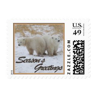 El oso polar Cubs de los saludos de la estación Sellos