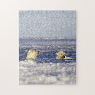 El oso polar pare jugar en el hielo de paquete del puzzle